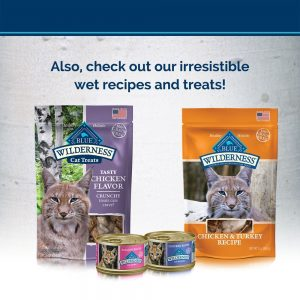 BLUE Wilderness Kitten Grain-Free Chicken Dry Cat Food