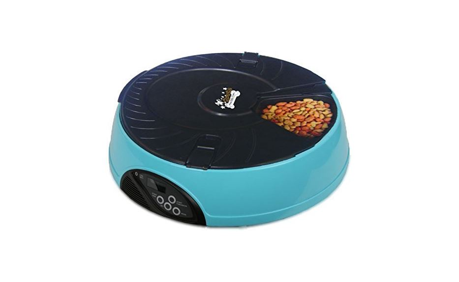 Best Automatic Cat Feeder -Buyers' Guide Best Cat Food Advisor