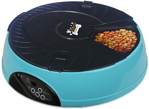 Best Automatic Cat Feeder -Buyers' Guide - Best Cat Food Advisor