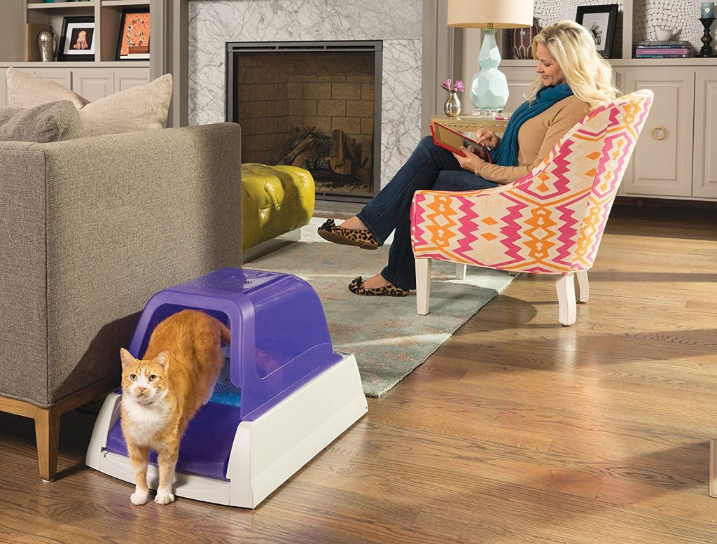 Best Automatic Litter Box